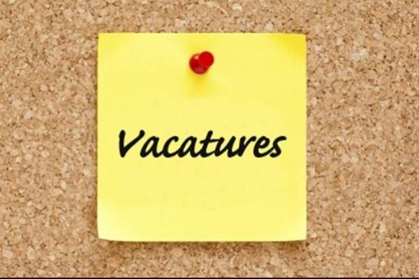 Interessante cursus schrijven vacatureteksten voor werving vrijwilligers